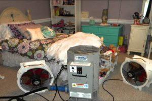 Le traitement thermique professionnel peut être l'un des moyens les plus efficaces d'éradiquer les punaises de lit